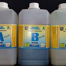Solución de nutriente para hidroponia